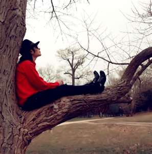 Michael sitting on giving tree
