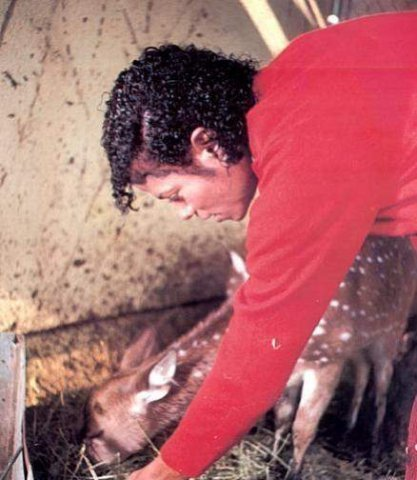 Michael feeding a deer