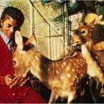 Michael feeding Prince and Princess 1985 - birth of Valentino